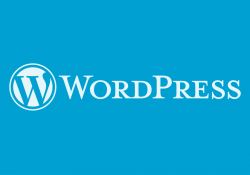 Como esconder que um site está usando wordpress? - wordpress 3