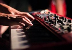 Magnificent - keyboardist community! - 1 musical keyboard