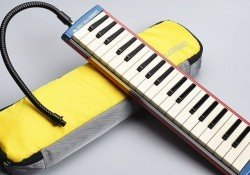 Lista de instrumentos mais fáceis do mundo - melodica