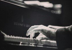 Everything about the power course of the keys of leandro cerqueira - piano improviso